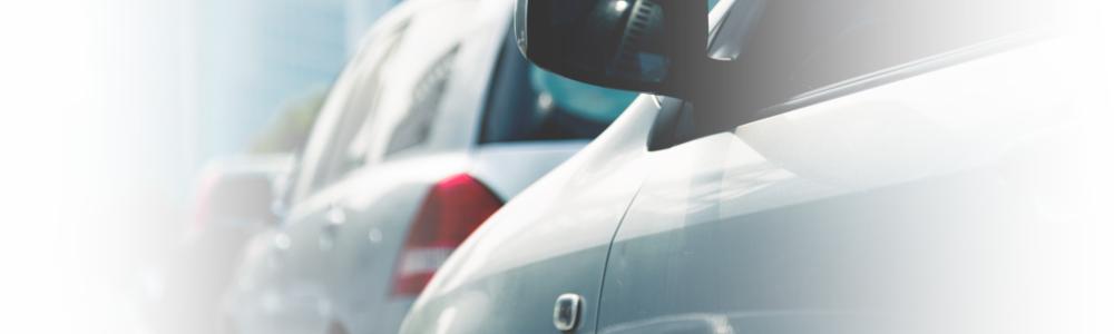 Navirec sõidukipargi koondraport